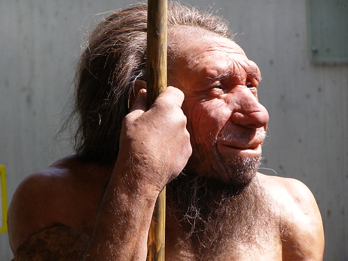 (Replica) Neanderthal Man at the Neanderthal Museum, Mettmann, Germany. - Photo by Erich Ferdinand