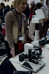 Zoom In - Polarising Microscope