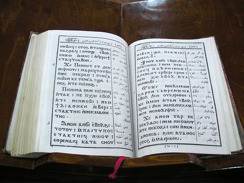 Bible in Coptic and Arabic