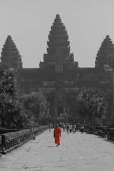 Angkor Wat a city swallowed-up by the jungle, visible from the space station and now open to tourists. Orange monk in Angkor Wat. Image by rufus.rafkat, on Flickr