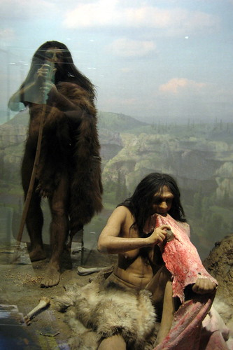 Spitzer Hall of Human Origins - Neanderthal diorama
