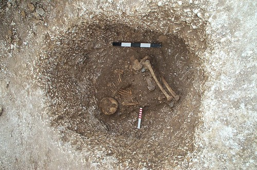 Crouched Burial, Boscombe Down, suggests that when this individual was buried, the body had already decomposed to some extent, probably from having been exposed. Image Credit - Wessex Archaeology.