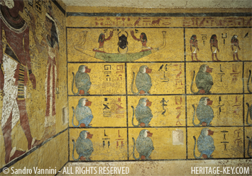 The stunning tomb walls of KV62 feature 12 baboons - one to represent each hour. Image Copyright - Sandro Vannini.