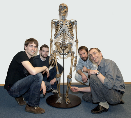 reconstructed neanderthal skeleton