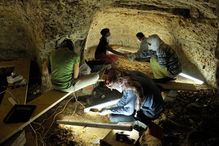 Qatna 2010 Excavations